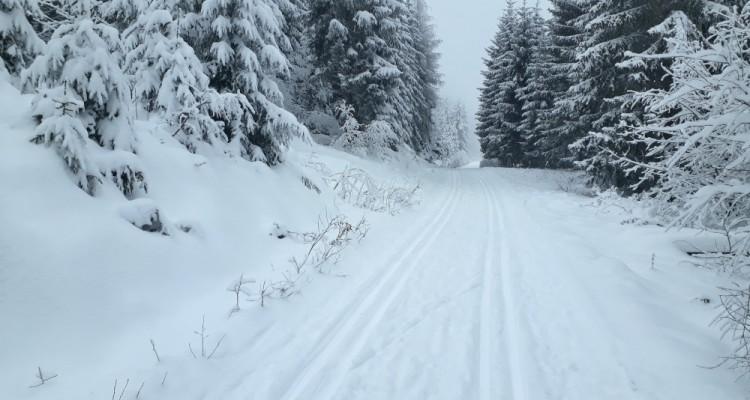Bílá stopa na Javorníku a okolí