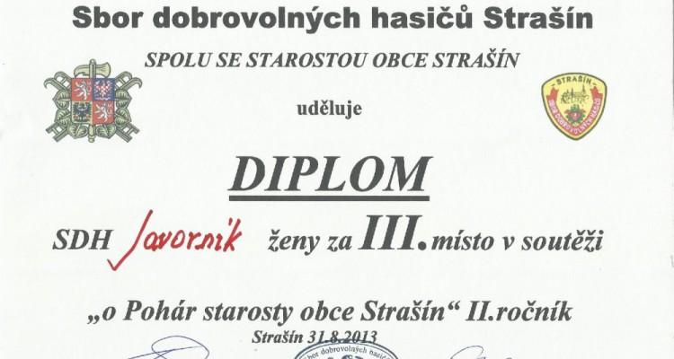 Diplom_zeny_Strasin_2013-page-001