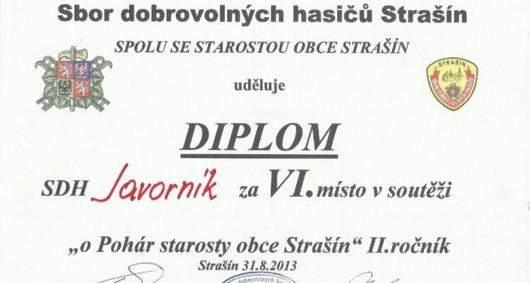 Diplom_muzi_Strasin_2013-page-001