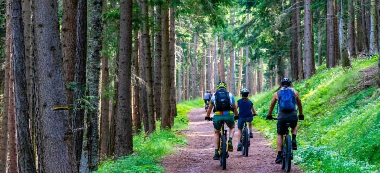 cyklo výlet Šumava