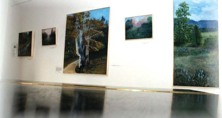 Galerie Muzea Šumavy