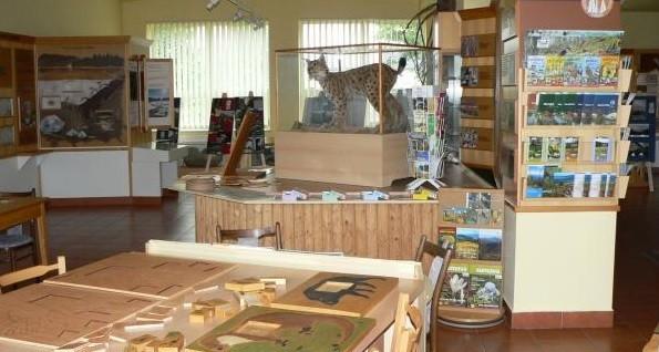 Stezka lesních her v Kašperských Horách - zábava i poučení na Šumavě