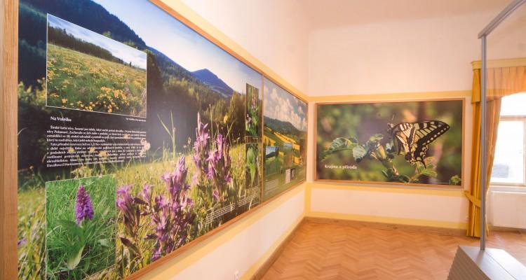 Muzeum Lamberská stezka v Žihobcích_1